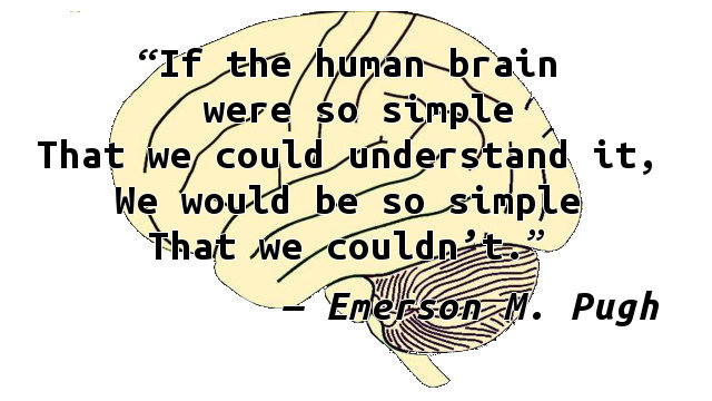 If the human brain were so simple That we could understand it, We would be so simple That we couldn't.