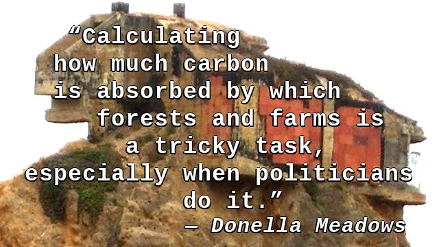 Calculating how much carbon is absorbed by which forests and farms is a tricky task, especially when politicians do it.