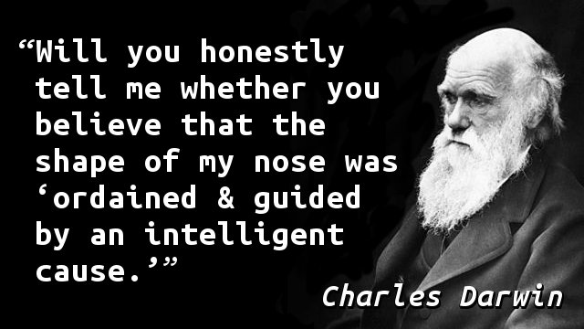 Will you honestly tell me whether you believe that the shape of my nose was 'ordained & guided by an intelligent cause.'