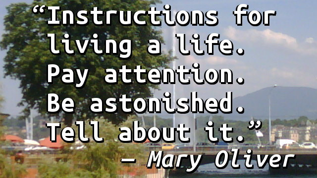 Instructions for living a life. Pay attention. Be astonished. Tell about it.