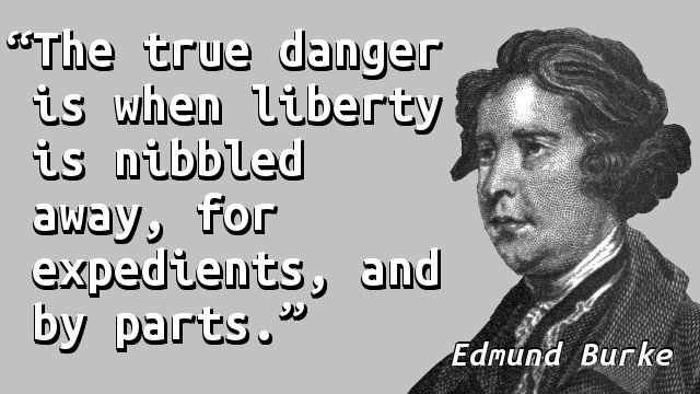 The true danger is when liberty is nibbled away, for expedients, and by parts.