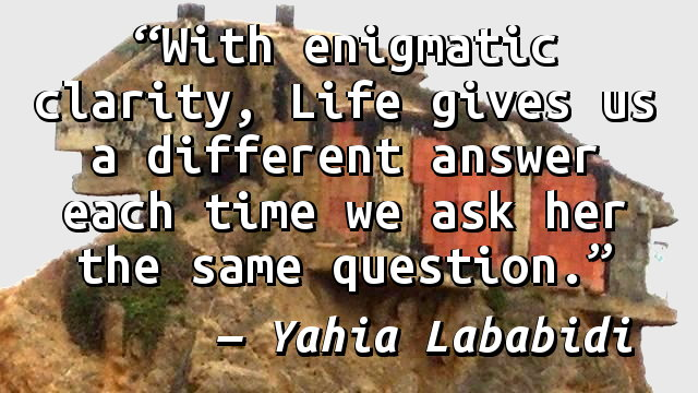 With enigmatic clarity, Life gives us a different answer each time we ask her the same question.