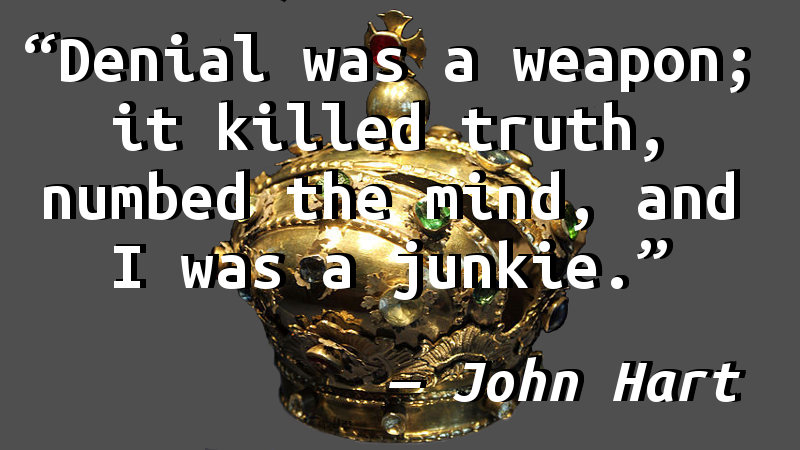 Denial was a weapon; it killed truth, numbed the mind, and I was a junkie.