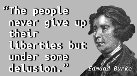 The people never give up their liberties but under some delusion.