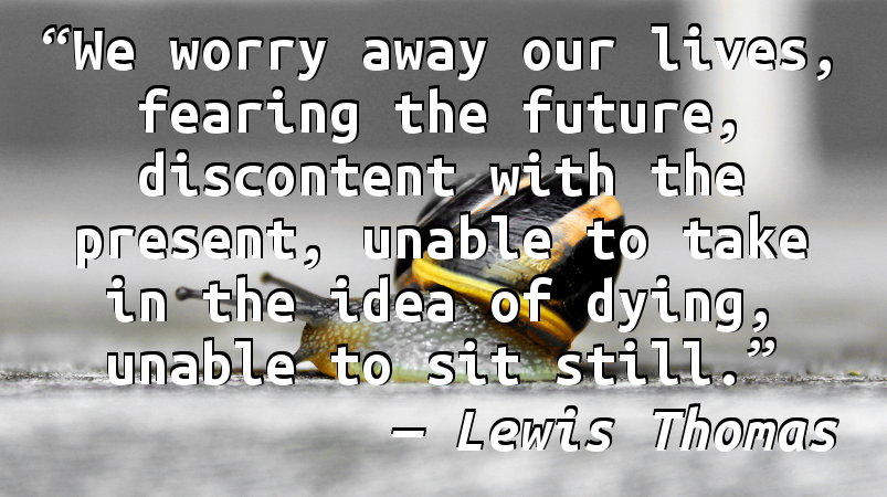 We worry away our lives, fearing the future, discontent with the present, unable to take in the idea of dying, unable to sit still.