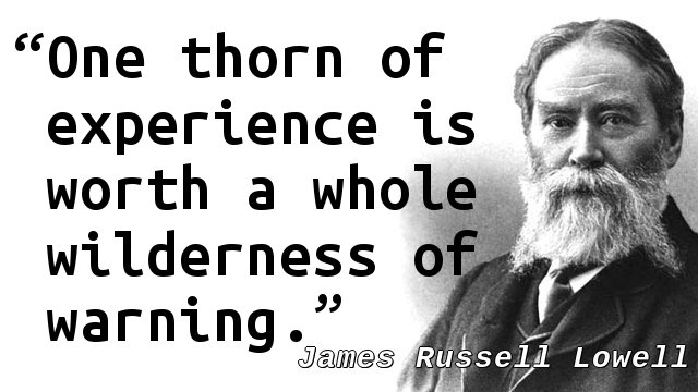 One thorn of experience is worth a whole wilderness of warning.