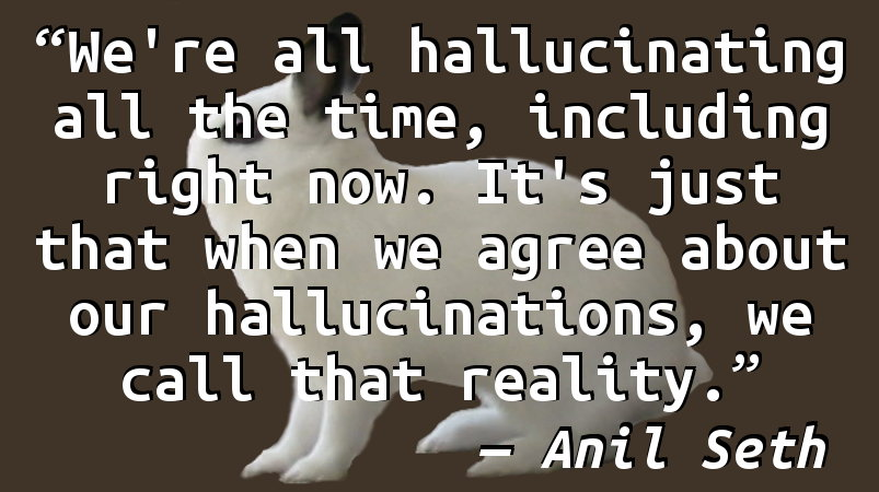 We're all hallucinating all the time, including right now. It's just that when we agree about our hallucinations, we call that reality.