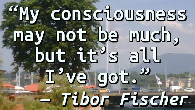 My consciousness may not be much, but it's all I've got.