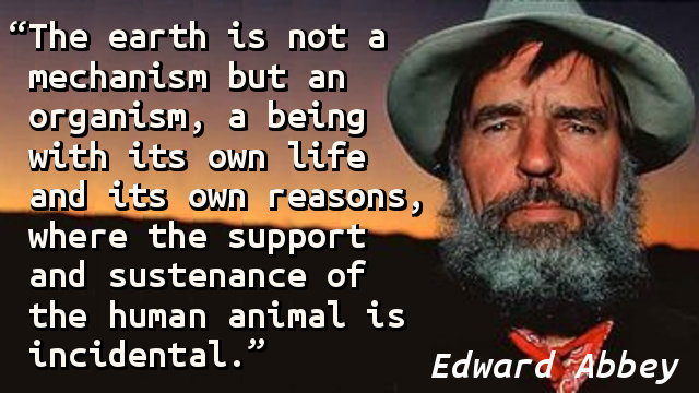 The earth is not a mechanism but an organism, a being with its own life and its own reasons, where the support and sustenance of the human animal is incidental.