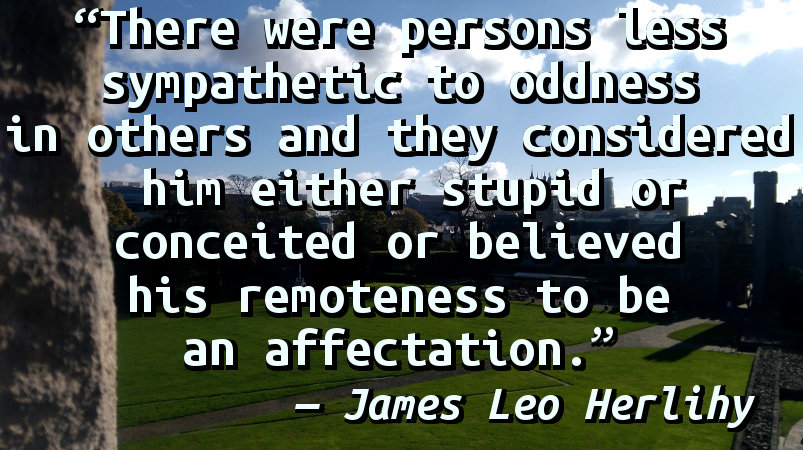 There were persons less sympathetic to oddness in others and they considered him either stupid or conceited or believed his remoteness to be an affectation.