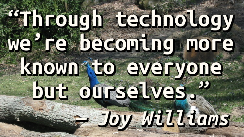 Through technology we're becoming more known to everyone but ourselves.
