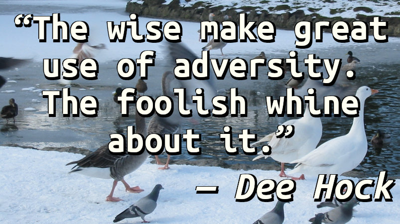 The wise make great use of adversity. The foolish whine about it.