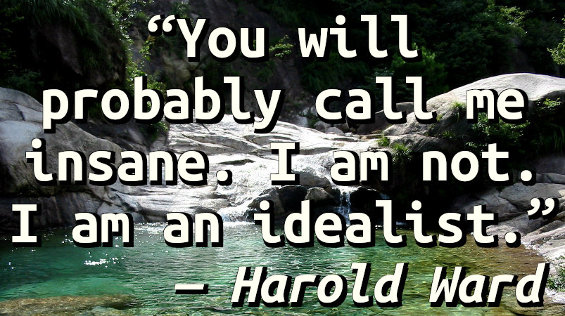You will probably call me insane. I am not. I am an idealist.
