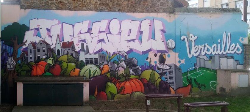 Street Art, 6 rue Bernard de Jussieu, Versaiiles, France