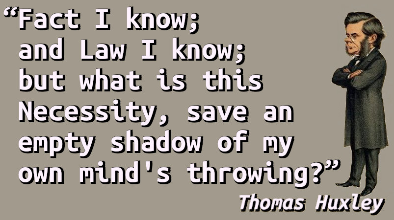 Fact I know; and Law I know; but what is this Necessity, save an empty shadow of my own mind's throwing?