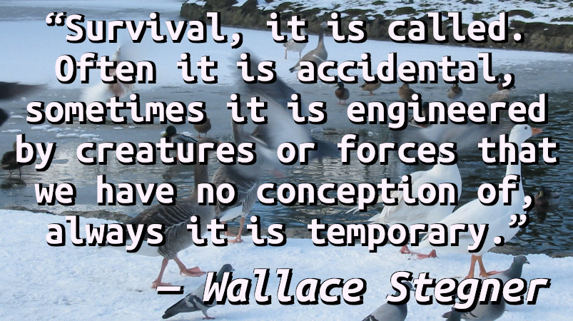 Survival, it is called. Often it is accidental, sometimes it is engineered by creatures or forces that we have no conception of, always it is temporary.
